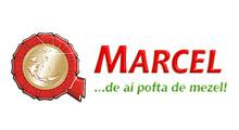 portofoliu_marcel