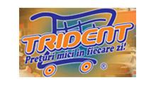 portofoliu_trident